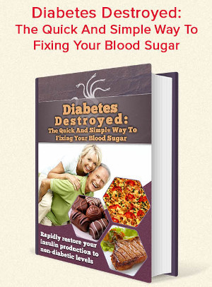 Diabetes Destroyed Program Book With Description