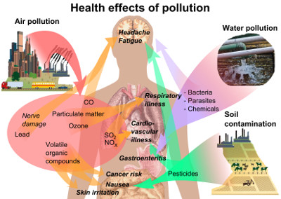Persistent Organic Pollutants And Diabetes
