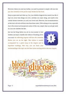 Diabetes Destroyed Program Review - Page 8 - Protocol Steps
